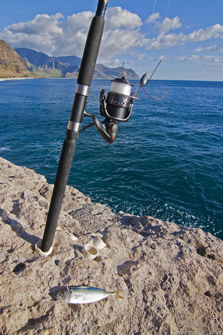 Fishing At Moi Hole Kaena Point Aloha From 808