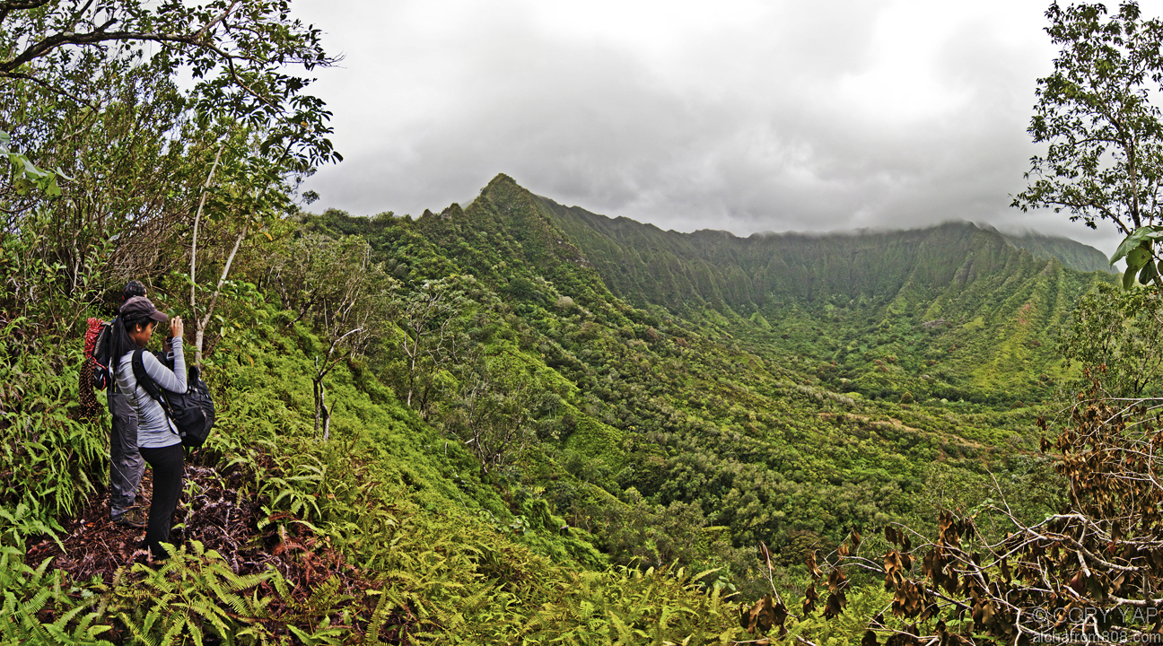 Koolau Hiking